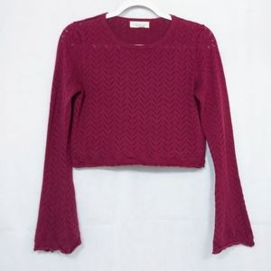 Forever 21 Wine Crochet Long Sleeve Crop Top
